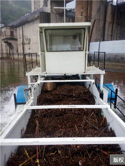 水草收割运输船