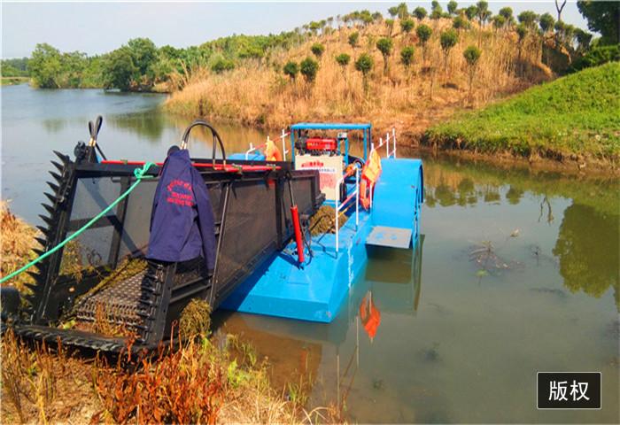 水面垃圾清理设备