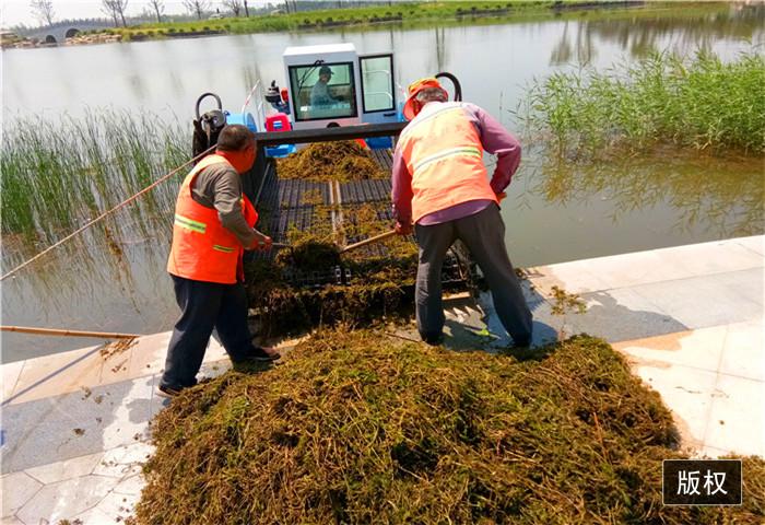河道水草收割船