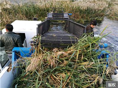 水草粉碎收割船