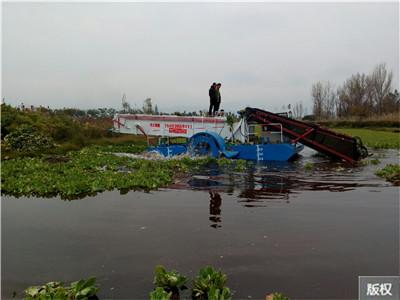 大型水葫芦打捞收割船