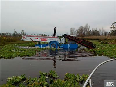 芦苇割草打捞收割船