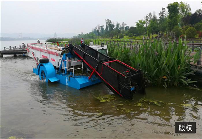 江面漂浮物全自動清漂船