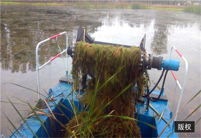湖泊水面垃圾清理船