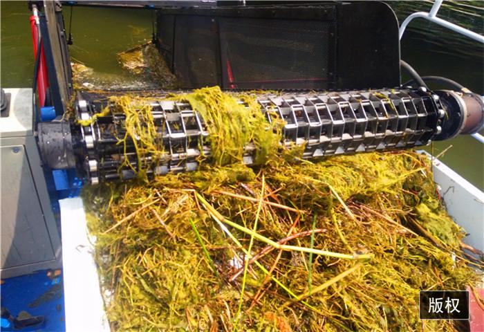 清理河道水葫芦船
