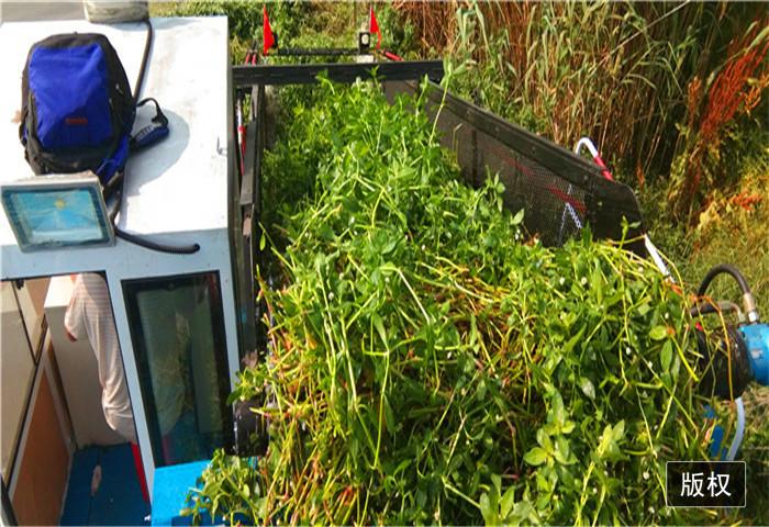 优质的水草收集船