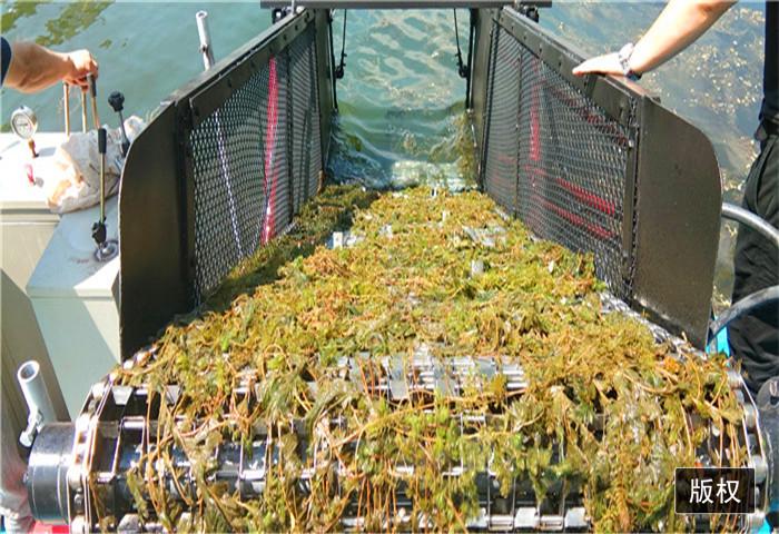 安徽大型割草船