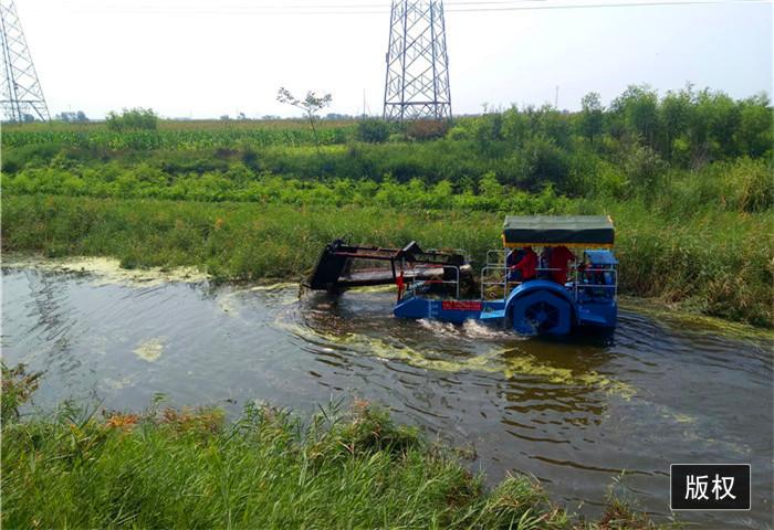 城市内河船舶打捞水草