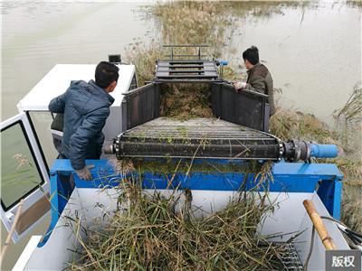 水上杂草船收割船