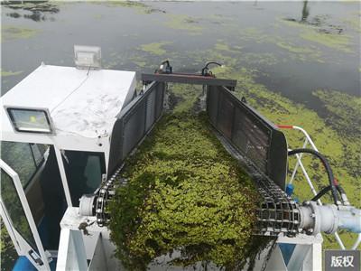 河道内的浮萍清理船设备