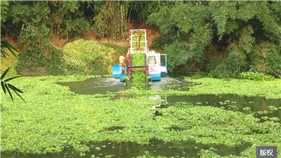 清理河道浮萍船设备