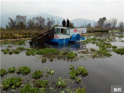 水草打捞船价格
