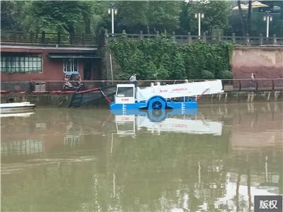 划算的水葫芦打捞船