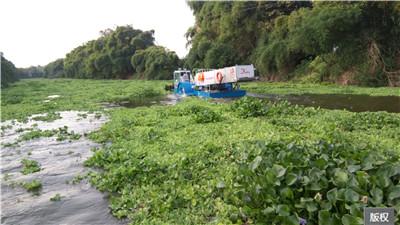 清理河面漂浮物的船